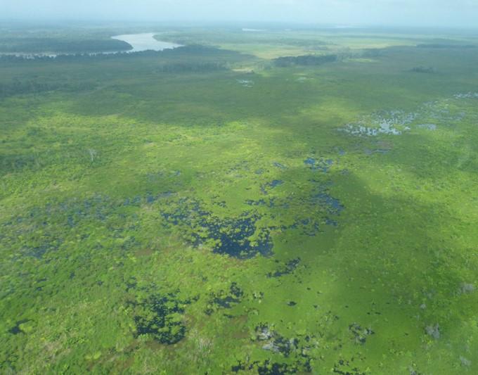 Se crea Refugio de Vida Silvestre:Matusagaratí