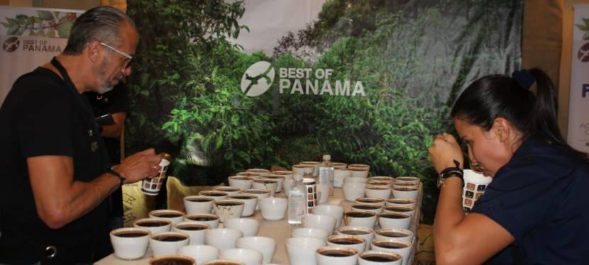 Panamá, tierra de cafésexóticos
